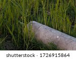 Nature Contaminant   Pipe For...