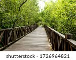 A Street In Mangrove Forest.