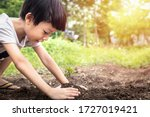 Little Child Were Planting...