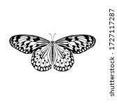 butterfly isolated line art... | Shutterstock .eps vector #1727117287