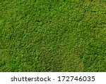 Green Grass Texture From A...