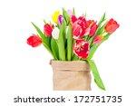 tulips in the sack | Shutterstock . vector #172751735