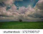 Lonely Tree In A Landscape With ...