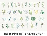 set of natural and floral... | Shutterstock .eps vector #1727568487