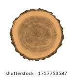 Felled Piece Of Wood From A...