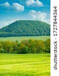Green Field Of Wheat...