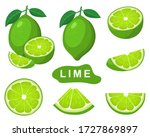 set of fresh whole  half  cut... | Shutterstock .eps vector #1727869897