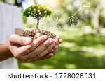 save world and innovation concept, girl holding small plant or tree sapling are growing up from soil on palm with connection line, ecology and conservation concept