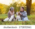 Stock photo senior couple walking their beagle dog in autumn countryside 172852061
