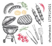 set of barbecue elements drawn ... | Shutterstock .eps vector #1729114321