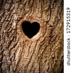Heart Shaped Bird Nest In...
