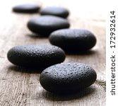 wet smooth polished hot massage ... | Shutterstock . vector #172932614