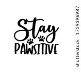 Stay Pawsitive  Funny Text With ...