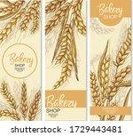 vector hand drawn wheat ears... | Shutterstock .eps vector #1729443481