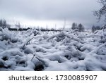 Magical Winter Landscape In The ...