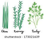 fresh herbs set with names in... | Shutterstock .eps vector #173021639