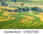 terraced fields  mu cang chai... | Shutterstock . vector #173027105
