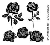 dark  roses on white | Shutterstock .eps vector #173030609