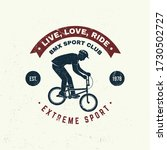 bmx extreme sport club badge  t ... | Shutterstock .eps vector #1730502727