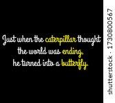 Just When The Caterpillar...