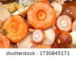 Mushroom russula fungus top...