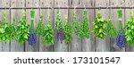 Various Fresh Herbs Hanging In...