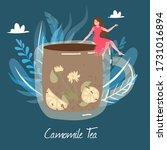 Chamomile Herbal Tea  Cup Of...