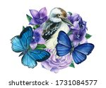 Composition Of Butterflies ...
