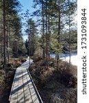 Etelä- Konnevesi nationalpark in Konnevesi, Finland