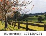 Autumnal Landscape Nature...