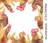 Square Frame With Hen  Eggs An...