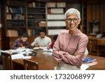 Portrait of mature professor...
