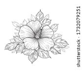 hand drawn bunch with hibiscus... | Shutterstock .eps vector #1732079251