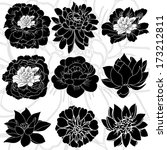 beautiful flowers material... | Shutterstock .eps vector #173212811