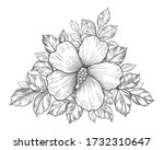 hand drawn bunch with hibiscus... | Shutterstock .eps vector #1732310647