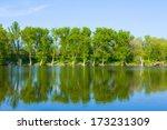 Summer Lake Scene