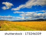 wheat field near the village at the foot of the mountain under cool blue summer sky - stock photo