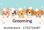 The Banner Group Of Cute Dog...