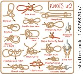 set of rope knots  hitches ... | Shutterstock . vector #1732982057
