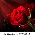 Red Rose Flower Isolated On...