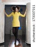 beautiful woman with elegant... | Shutterstock . vector #173337311