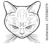 evil looking cat head.... | Shutterstock .eps vector #1733386574