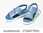 a pair blue sandals isolated  | Shutterstock . vector #1733477051