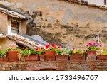 Certaldo  Tuscany   Italy  A...