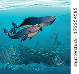 Couple Of Cartoon Whales Swim...