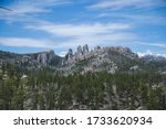 Rocky hills with green pine trees in Black Hills South Dakota United States on blue sky background as nature concept for travel blog and empty space for text with forest landscape as postcard