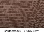 photo of leather  background or ... | Shutterstock . vector #173396294