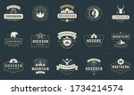 camping logos and badges... | Shutterstock .eps vector #1734214574
