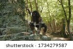 Small photo of Wild african savage in animal fur costume sitting on rocks watching animals food hunting in the forest near cave. tribe leader. Homo sapiens.