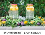 drinks with fruits at a wedding ... | Shutterstock . vector #1734538307